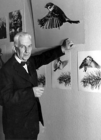 Harald Olsson
